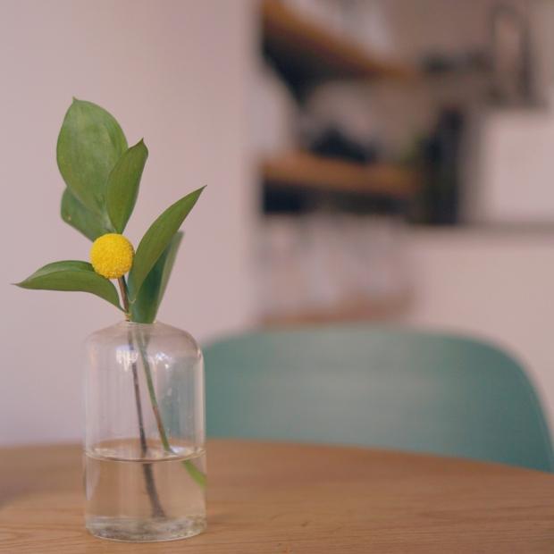 Emme Hope Blog Saint Frank San Francisco Craspedia Flower