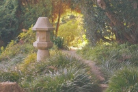 Emme Hope Slow Blog San Francisco Botanical Garden Tranquil Path 2