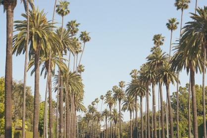 La La Land by Emme Hope - Slow Blog