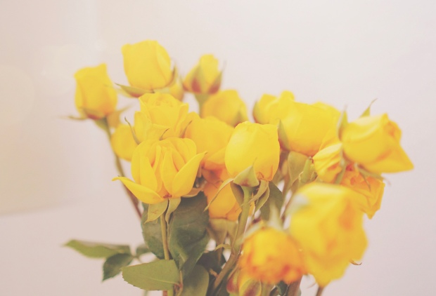 emme-hope-slow-living-san-francisco-fresh-blooms-at-home-yellow-roses emmehope.co copyright 2017