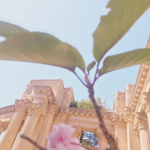 Palace of Fine Arts San Francisco California emmehope.co copyright 2018 - Slow Travel Slow Life