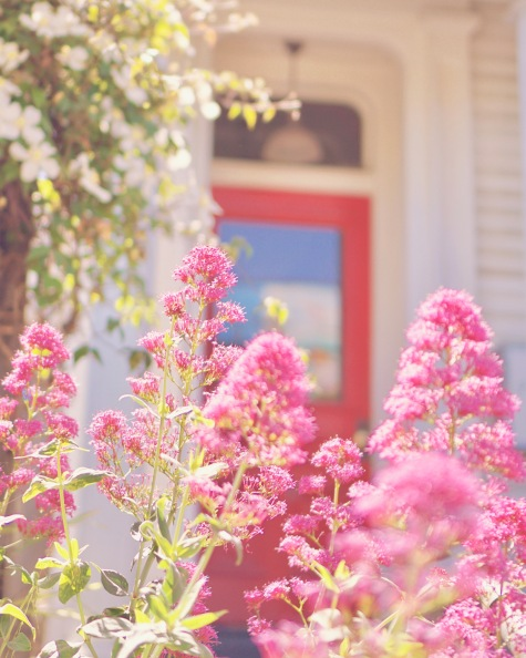 Mission District (The Mission) by Emme Hope Slow Blog San Francisco Slow Travel Slow Living - copyright 2019 emmehope.co